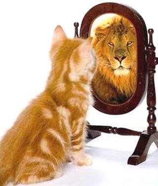 confiance en soi